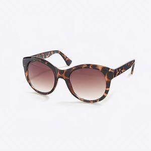 nwt jcrew classic oversized sunglasses e9332